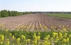 Uwaga rolnicy zterenu gminy Cegłów!!!  Wgminie Cegłów zostały wyznaczone obszary ONW