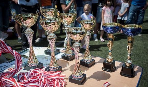 VI turniej dzikich drużyn o Puchar Wójta Gminy Cegłów