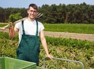 Pomoc wrozpoczęciu działalności gospodarczej narzecz młodych rolników