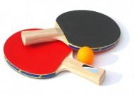 II Turniej Tenisa Stołowego oPuchar Wójta Gminy Cegłów